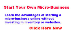 start micro business