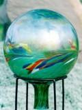 Gazing Globe 1