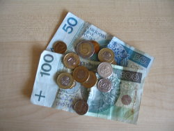 polish currency is the zloty